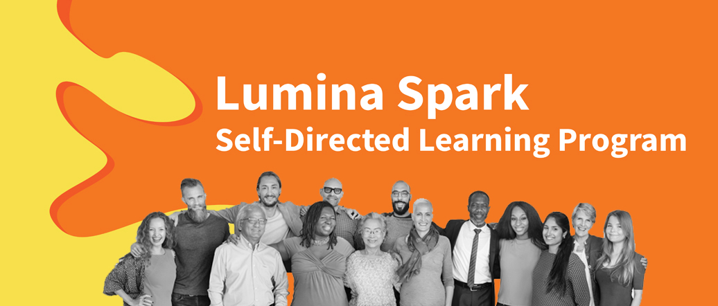 Lumina Spark Self-directed Online Learning
