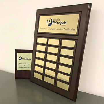 OPC large and small plaque